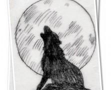 Schizza un… lupo che ulula