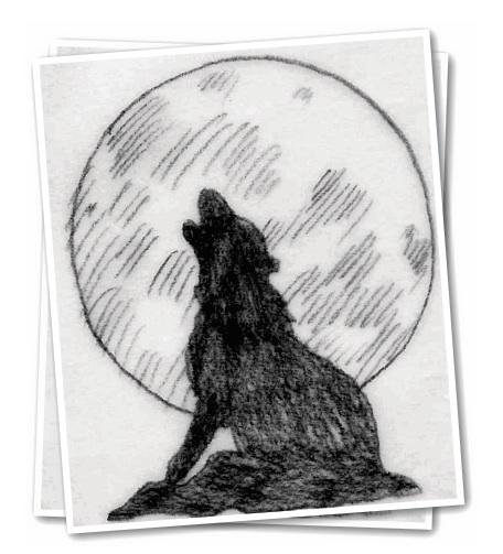 Schizza un lupo che ulula art 39 s creation for Disegni di lupi facili