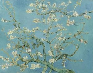 Ramo di mandorlo fiorito, Vincent Van Gogh, 1890