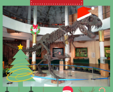 Un Natale al museo!